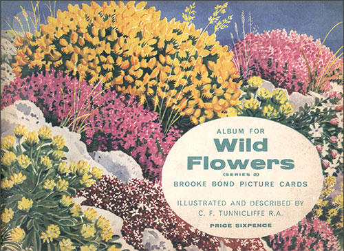 Wild Flowers Series 2 album cover