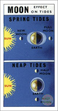 6. Moon - Effect on Tides